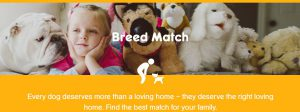 Pedigree Breed Match