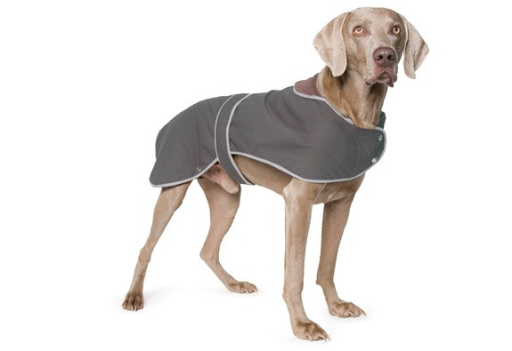 Dog Wax Jacket