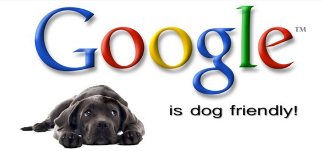 Google is dog friendly graphic