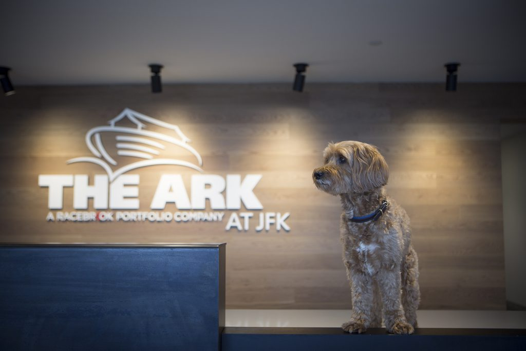 Tucker, The ARK's canine ambassador, at Reception in The Ark Pet Oasis At JFK