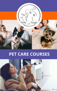 Holly & Hugo Online Pet Care Courses