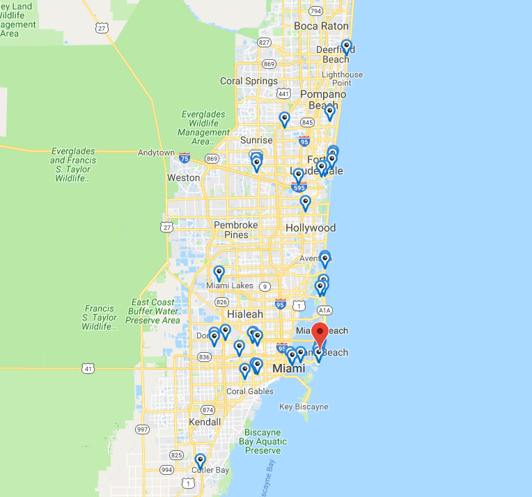 Dog Friendly Hotels Miami Beach Florida