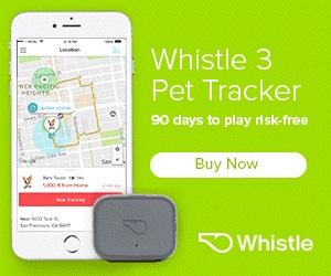 Whistle 3 Pet Tracker and Activity Monitor
