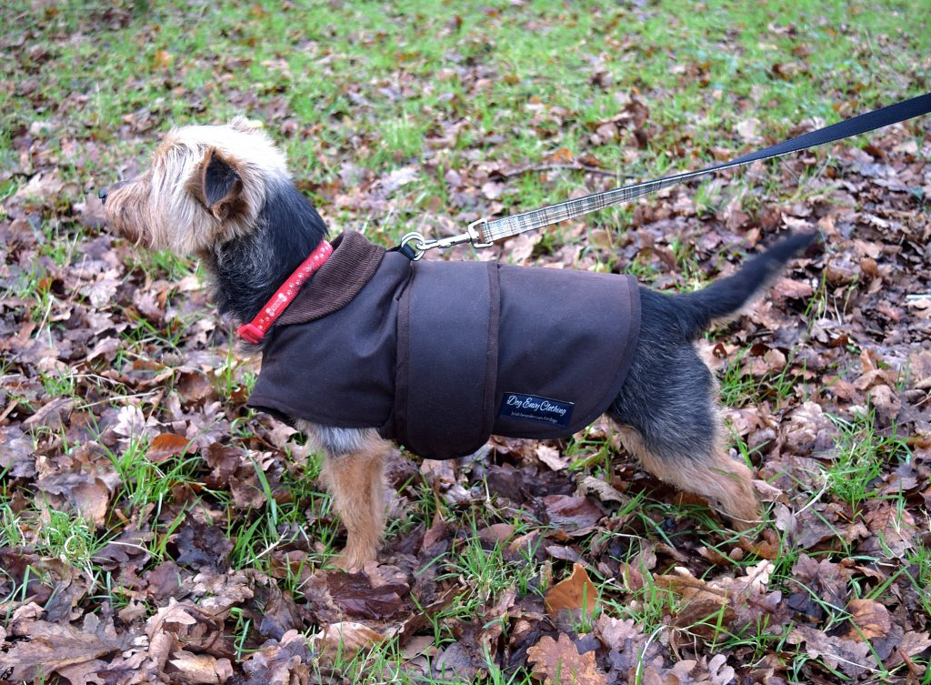 Wax Cotton Dog Coat Dog Envy Clothing