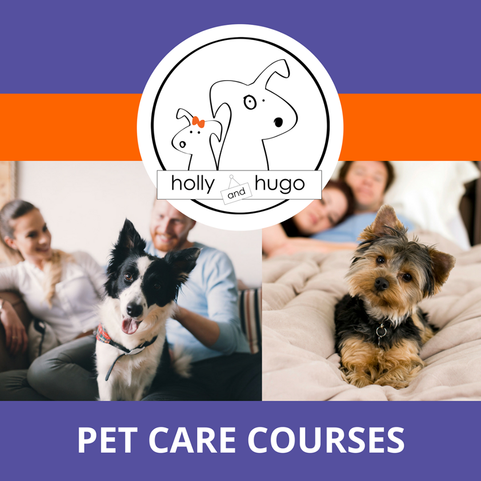 Holly & Hugo Pet Care Courses