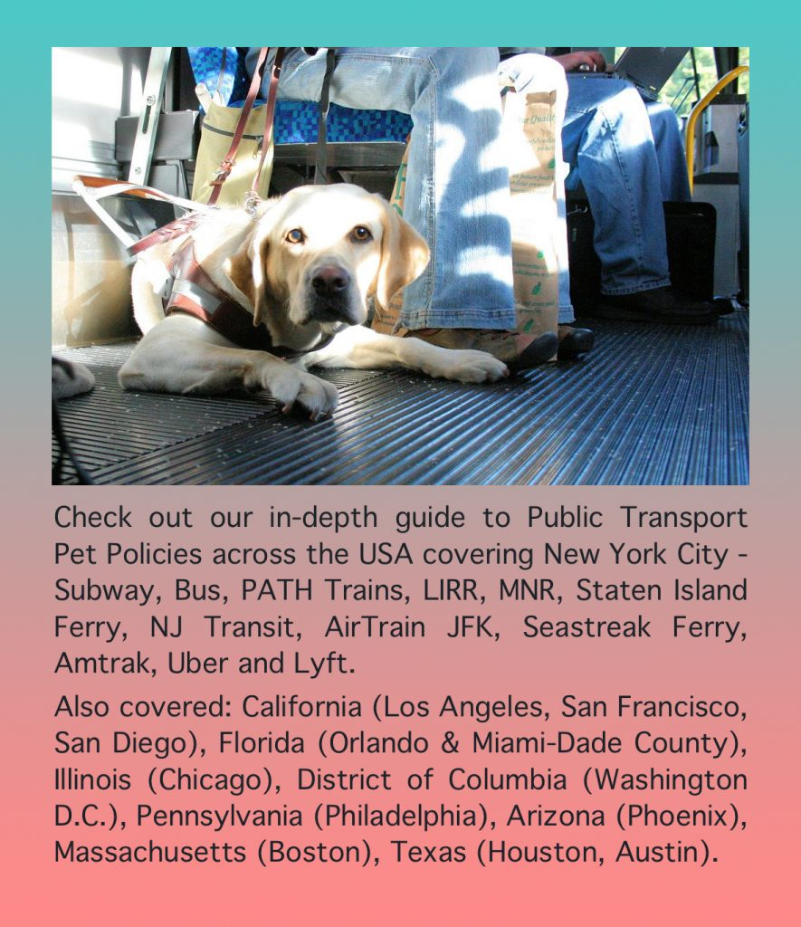 Public Transport Pet Policies across USA