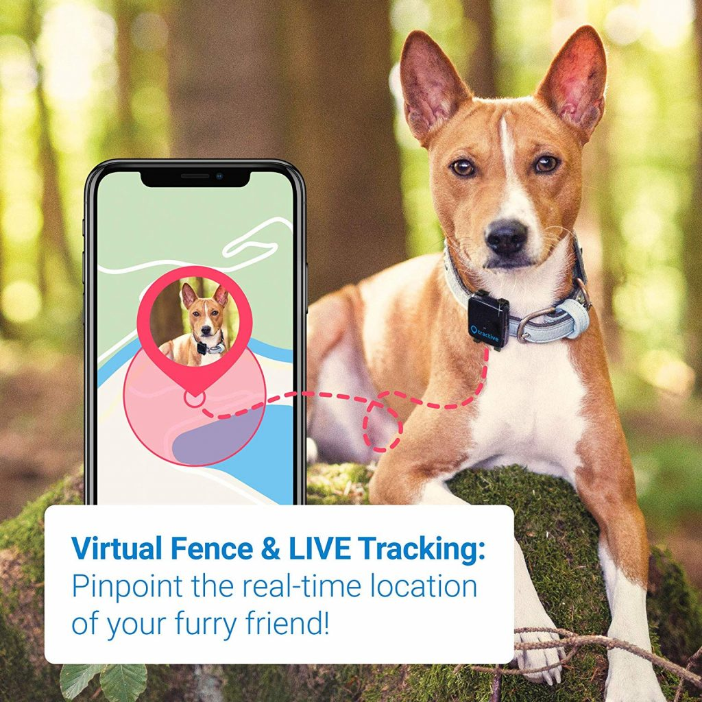 Tractive GPS Tracker & Pet Activity Monitor