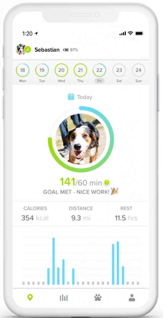 Whistle Go Explore The Ultimate Health + Location Tracker for Pets