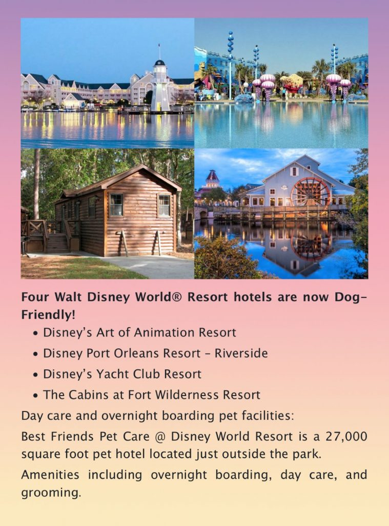 Dog Friendly Disney World Resort Hotels