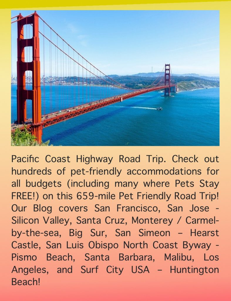 Pet Friendly Pacific Coast Highway Road Trip