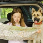 Helpful Tips for Traveling With Your Dog