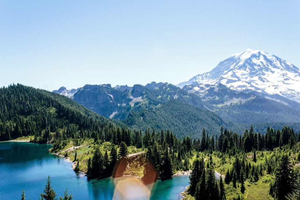 Mt. Rainier National Park, Washington in the Paciific Northwest (PNW)