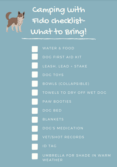 10-point Checklist  for Camping with Dogs