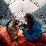10 tips for camping with your dog