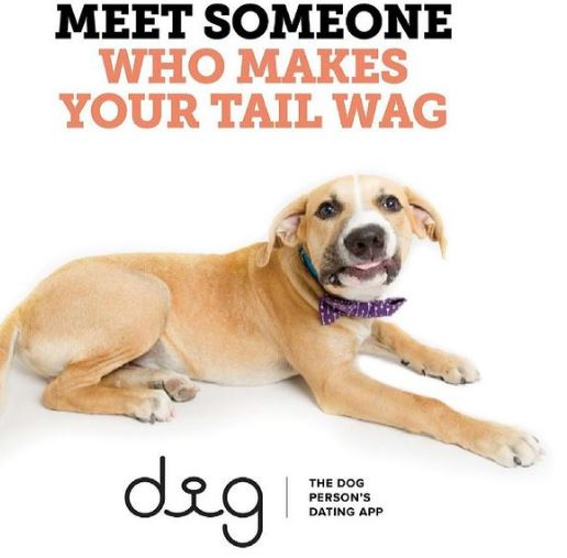 Dig-The Dog Person's Dating App